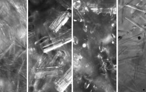 Bild AlphaGipsOnline: Kristallformen in der Gipsproduktion