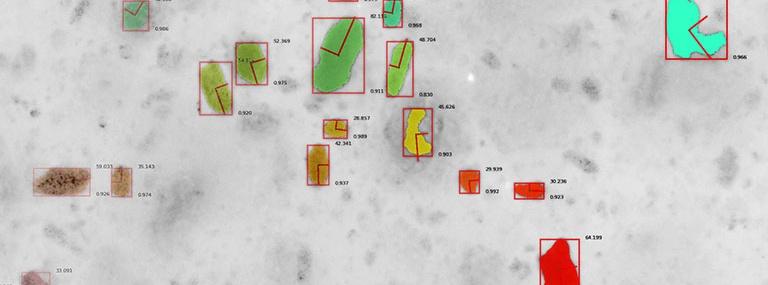 Bild AlphaGipsOnline: Bildsegmentierung in einer niedrig konzentrierten Suspension